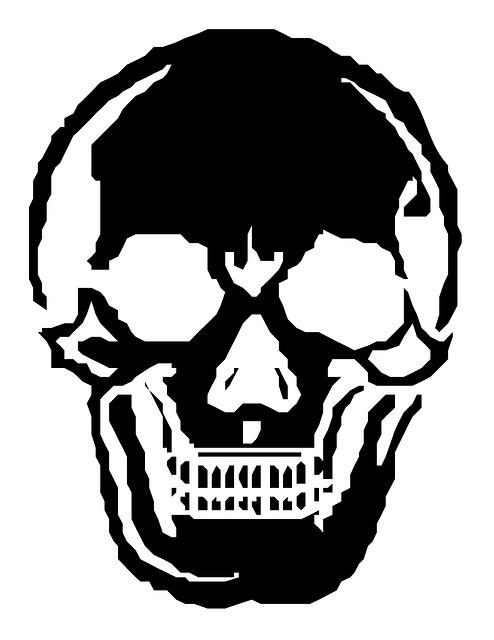 skull-185527_640